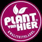 Plant van hier